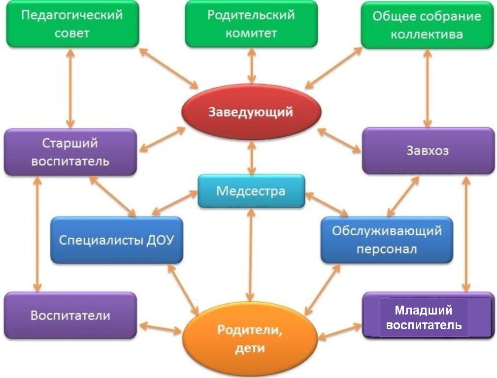 структура управления МБДОУ схема